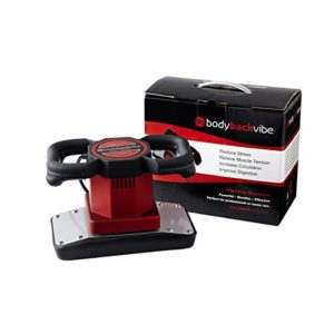 Body Back Vibe Dual Speed